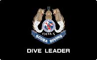 Dive Leader